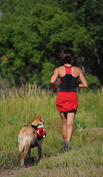 runner with dog
